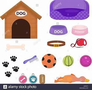 Sachen Auf Rechnung Bestellen : hunde sachen symbol set mit zubeh r f r haustiere flachen stil isoliert auf wei em hintergrund ~ Themetempest.com Abrechnung