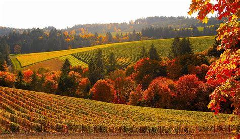 home design eugene oregon 20 stunning photos of oregon 39 s fall foliage that oregon