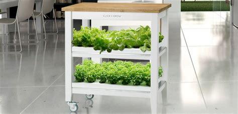 faire pousser interieur faites pousser des fraises et des salades dans votre salon sciencesetavenir fr