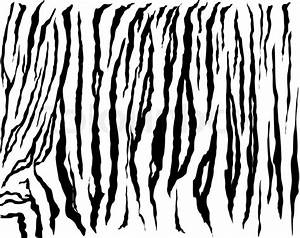 Animal skin,white tiger Stock Vector Colourbox