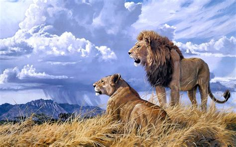 Beautiful Nature Animal Wallpapers - beautiful nature and animal wallpaper wallpapersafari