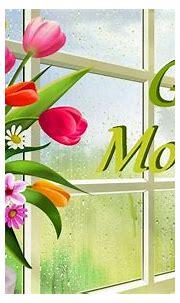 Download Morning Wallpaper Download Free Gallery
