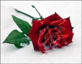 boutique mariage frere l islam ou la religion de tout les prophètes les joyaux de l islam