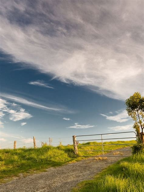 Hdwallpapers87.com - Download Blue sky and a green field ...