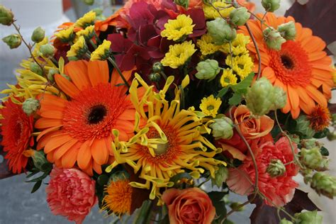fall flowers autumn flowers lamberdebie s blog