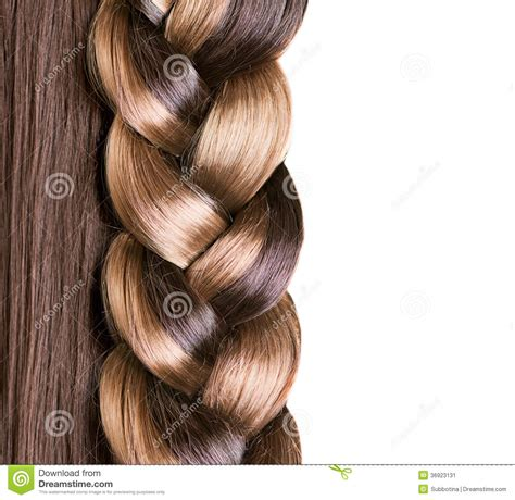 Hair Image by Braid Hairstyle Stock Image Image 36923131