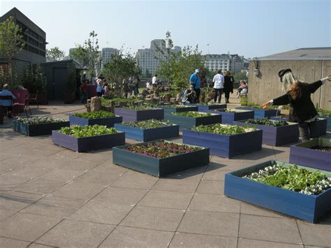 rooftop landscape queen elizabeth hall roof garden london created for festival of britain s 60th anniversary