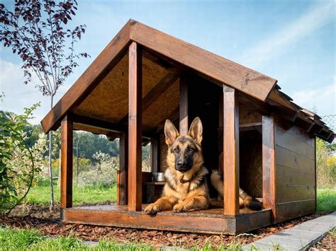 dog house plans  hinged roof luxury dog house plans