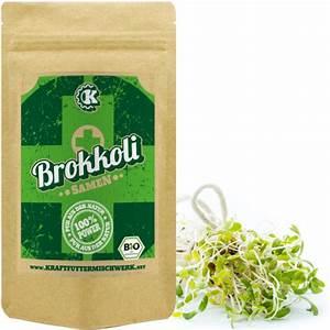 Brokkoli Samen Kaufen : bio brokkoli samen kaufen kraftmischer ~ Orissabook.com Haus und Dekorationen