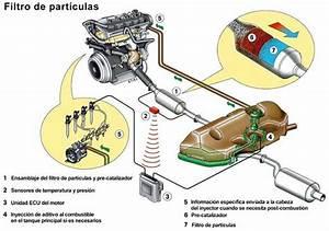 Filtro De Part U00edculas Diesel  Todas Las Preguntas Y