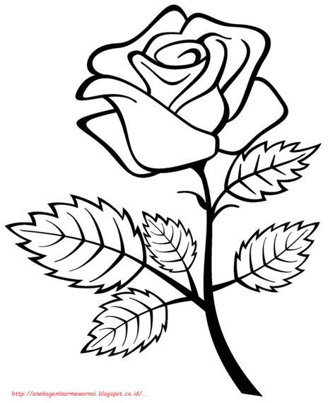 15 gambar mewarnai bunga mawar untuk anak paud dan tk