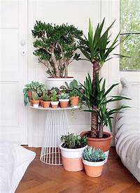small indoor garden ideas 40 Smart Mini Indoor Garden Ideas - Bored Art