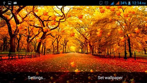 Autumn Themed Wallpapers For Android by Fall Themed Backgrounds Free Hd Wallpapers