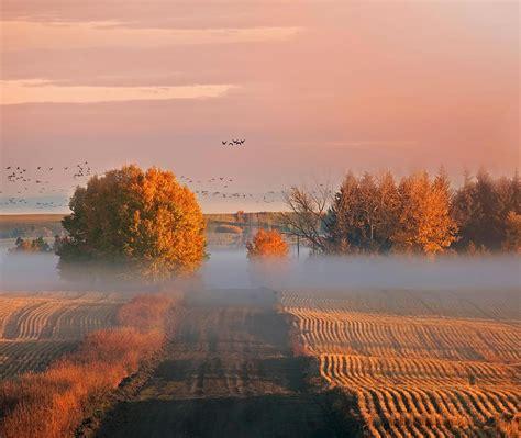 Alberta Thanksgiving Bing Wallpaper Download