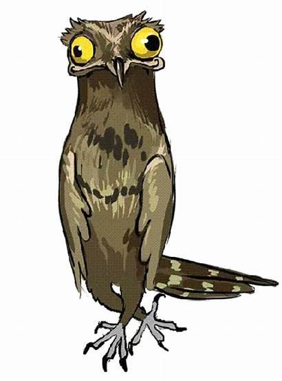 Bird Potoo Cartoon Freaky Character Dance Birds