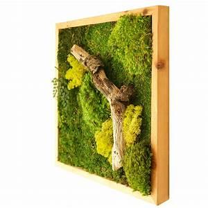 18x18 moss wall art light frame real bodywork With moss wall art