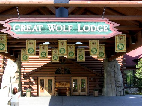Great Wolf Lodge…i'm Missing The Point  Parrot Nation