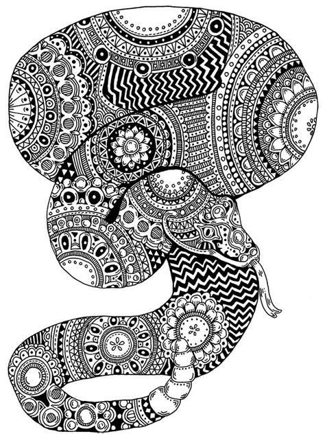 snake coloring pages  adults printable   snake coloring pages