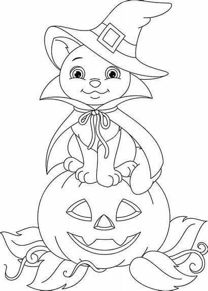 Coloring Cat Halloween Witch Pages Pumpkin Sitting