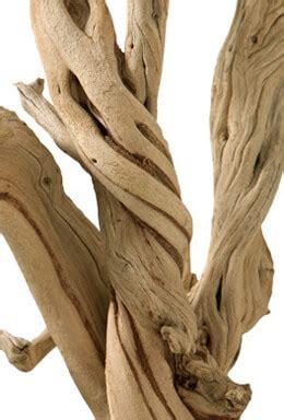 sandblasted ghostwood branches  california driftwood