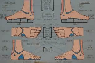 Reflexology Chart Foot Ankle Area