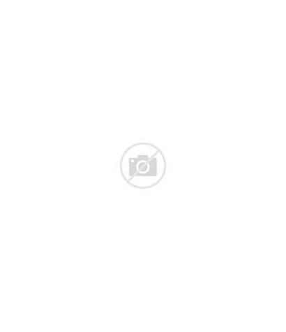 California District Svg State Senate 16th Sd