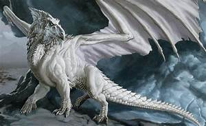 Black And White Images Of Dragons 6 Free Hd Wallpaper ...