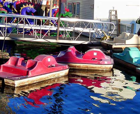 Paddle Boats Harbor by Paddle Boat Reflections In Baltimore Harbor S Photo
