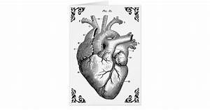 Vintage Anatomical Heart Diagram Gothic Card