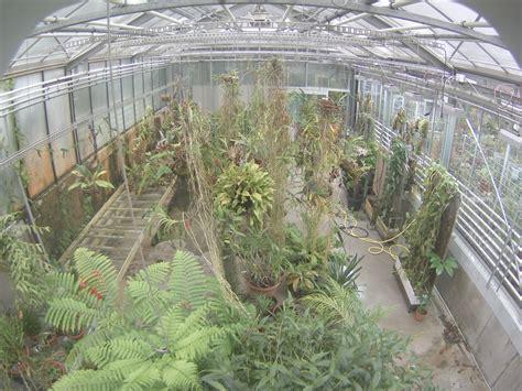 Kalthaus Botanischer Garten Basel by Botanischer Garten Uni Basel Titanwurz