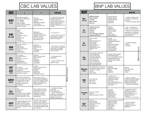 normal range for bnp blood test normal lab values chart template normal lab ranges see more lab values interpretation
