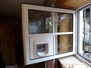 Katzenklappe In Fenster : katzent ren ~ Orissabook.com Haus und Dekorationen