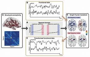 Graph Signal Processing For Brain Imaging   A  Structural