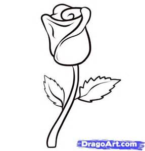 How to Draw Steps Rose Drawings