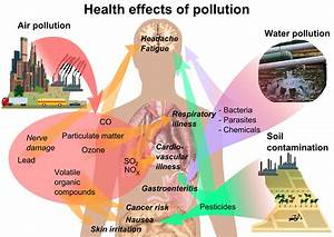 File:Health effects of pollution.png - Wikipedia