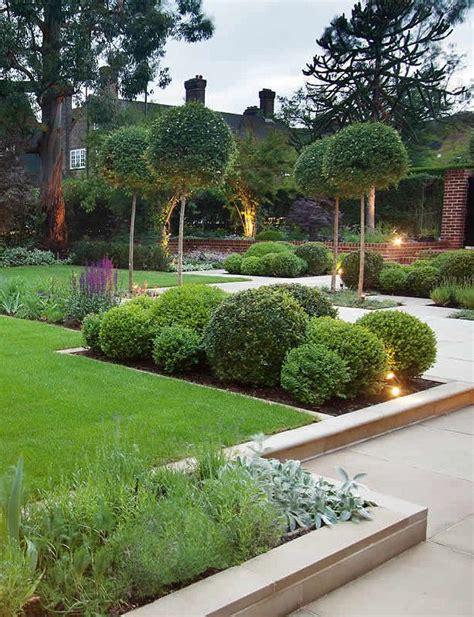 the 25 best small garden trees ideas on