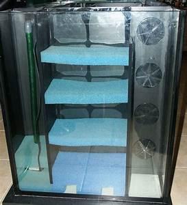 Filter Für Aquarium : aquariumfilter und zubeh r selber bauen 2630 seiten patente zeigen wie prima ~ Orissabook.com Haus und Dekorationen
