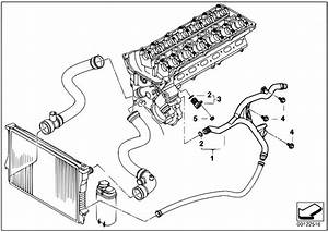 Original Parts For E60 530i M54 Sedan    Engine   Cooling System Water Hoses