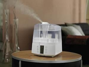 Luft Befeuchten Hausmittel : luftbefeuchter gegen trockene luft in der heizperiode ~ Markanthonyermac.com Haus und Dekorationen