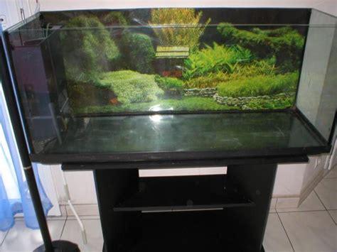 aquarium 500 litres occasion aquarium 100 litres prix 28 images d 233 cor aquarium 100l avis aquarium pour discus le