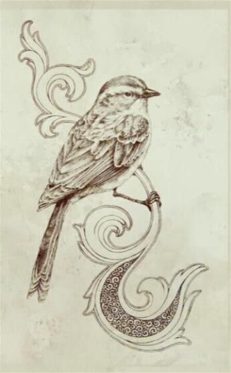 neat bird drawing western  wood burning pinterest