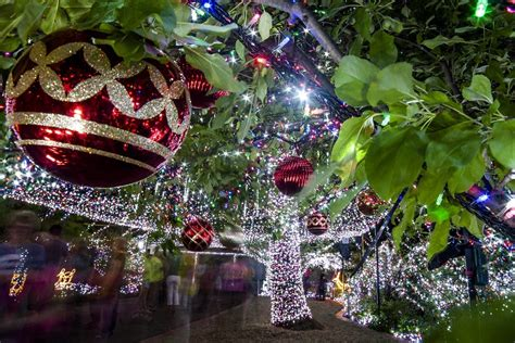 christmas in the city 2015 canberra