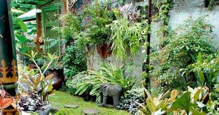 tips memilih tanaman hias halaman rumah tanaman