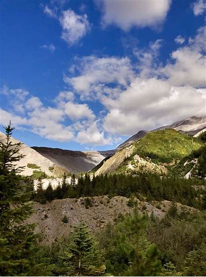 Toutle River Trail Washington Alltrails