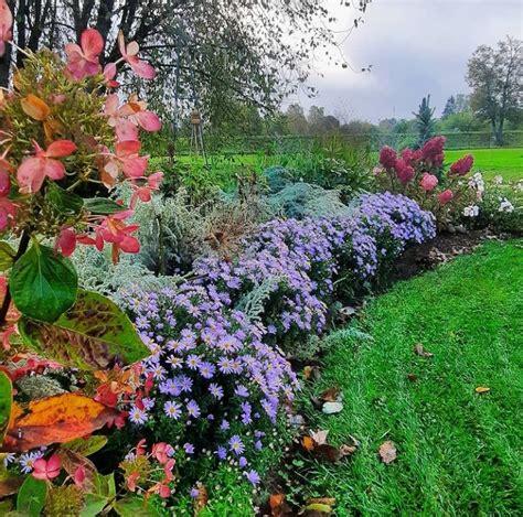 raunas-stadaudzetava-ziedi - Ceļveži.lv