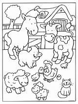 Farm Coloring Animal Preschool Kindergarten Worksheets Toddler Comment sketch template