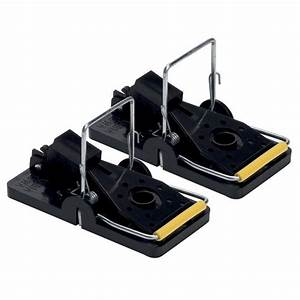 Pre Baited Mouse Traps  2