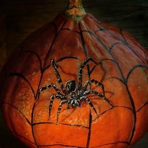 Halloween Kürbis Bemalen : anleitung k rbisse bemalen nicht nur f r halloween ~ Eleganceandgraceweddings.com Haus und Dekorationen