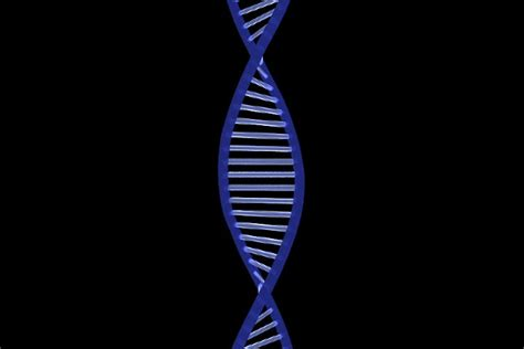 stock video  computer animated dna helix