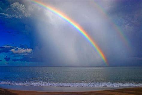 rainbow  sea xcitefunnet